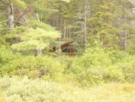 Hotel Sacacomie : hutte de trappeur dans le domaine