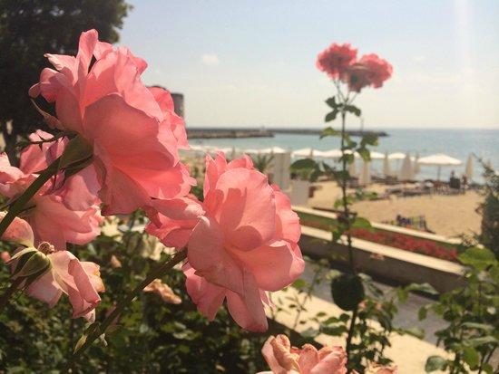 The Palace Hotel: вид на пляж
