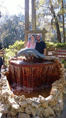 Ellie Schiller Homosassa Springs Wildlife State Park : Homosassa Springs Wildlife Park