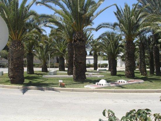 Hotel Kanta: grounds