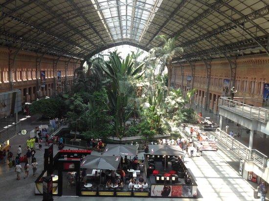 Estación de Atocha: João Luiz d'Agosto