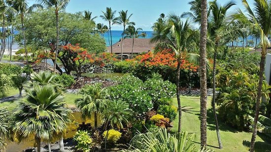 Mauna Lani Bay Hotel & Bungalows : View from our room
