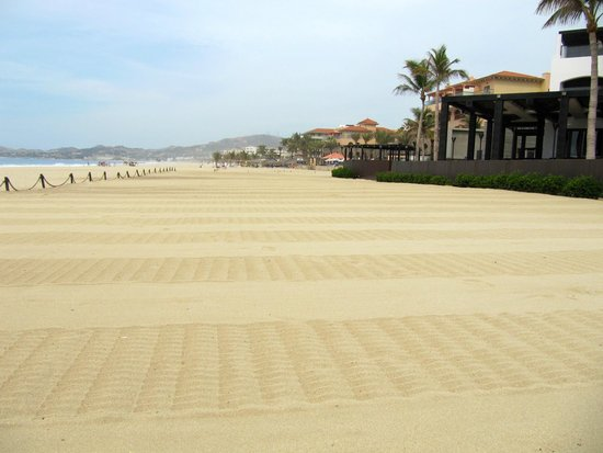 Cabo Azul Resort: Miles of white sand.