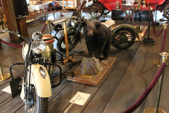 Durango and Silverton Narrow Gauge Railroad and Museum : A bear and some motor cycles