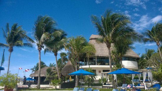 The Reef Playacar: ..