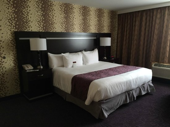 The Strathallan Rochester Hotel & Spa - a DoubleTree by Hilton: king suite bedroom