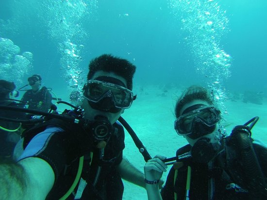 The Reef Playacar: buceo