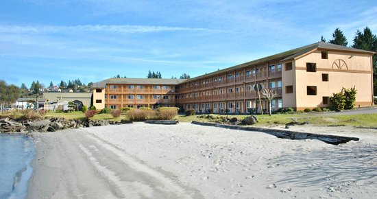 comfort inn on the bay port orchard motel reviews. Black Bedroom Furniture Sets. Home Design Ideas