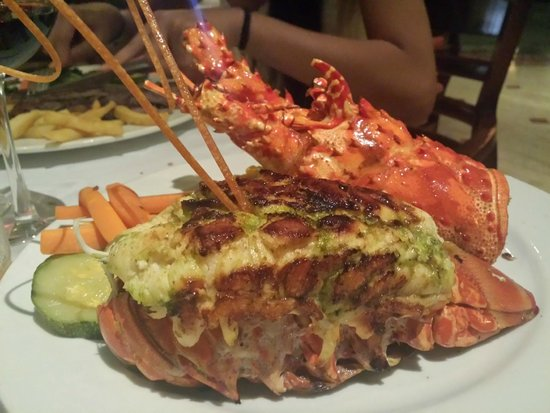Grand Palladium White Sand Resort & Spa : Lobster and a bottle of wine can be purchased for 49$