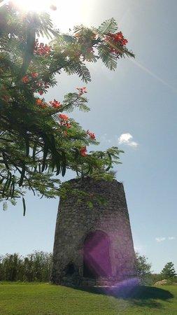Village de Menard : Village de Ménard - Restes du moulin
