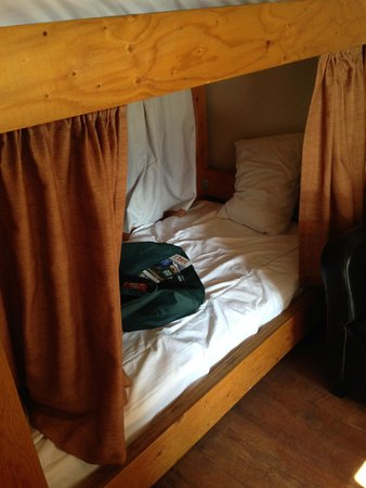 Hostel Bear: Lower bunk