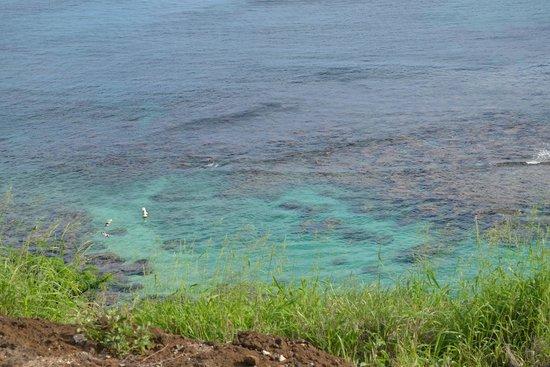 Hanauma Bay Nature Preserve : Hanauma Bay