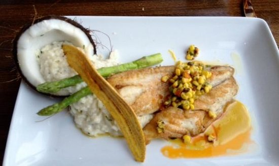 50 Ocean at Boston's on the Beach: Best Coconut Risotto presentation & taste
