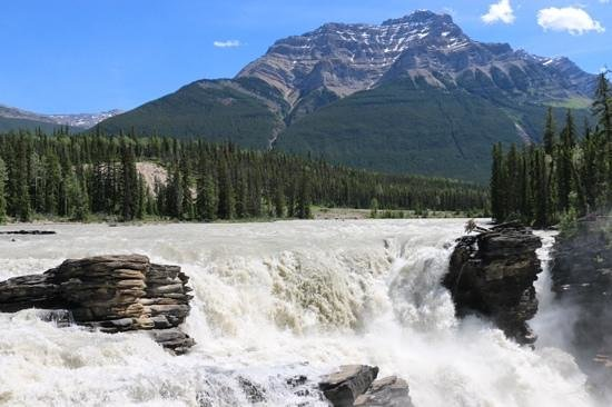 Icefields Parkway: Athabasca falls