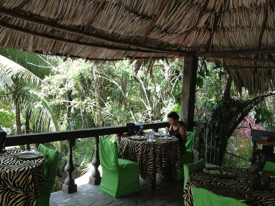 Belize Boutique Resort & Spa : Breakfast in the canopy