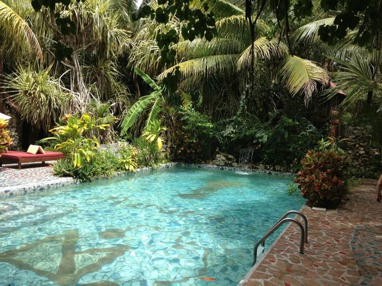 Belize Boutique Resort & Spa : pool