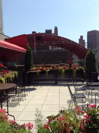 Hotel Metro: Roof terrace