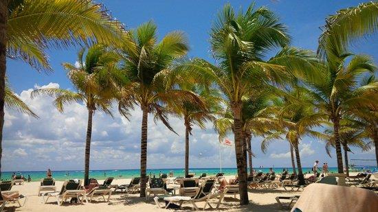 Hotel Riu Playacar: playa perfecta