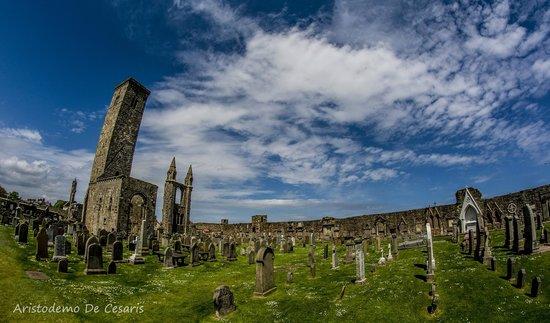 St Andrews Cathedral: La Torre