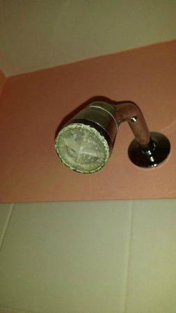 Emma's Cottage House: Room 501 - Shower Head
