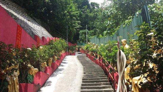 Ten Thousand Buddhas Monastery (Man Fat Sze): The trip up