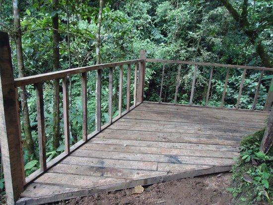 Turrialba, Costa Rica: forest deck