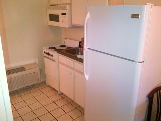 Flamingo Motel: Kitchen was functional and clean