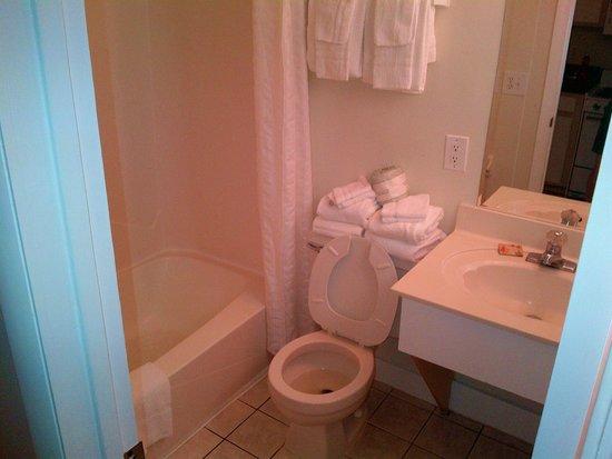Flamingo Motel: Bathroom was basic but it was clean