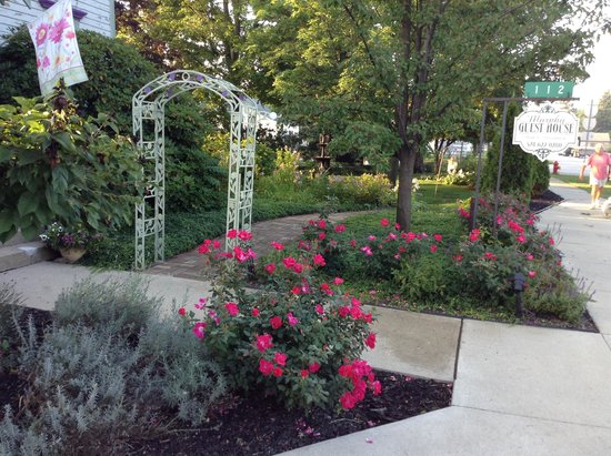 Murphy Guest House Bed and Breakfast: Roses at the entranace