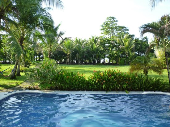 Osa Rainforest Rentals: Pool and View to the Ocean