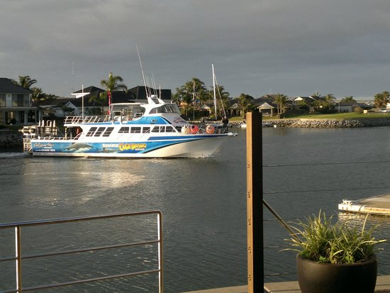 The Marina Hotel : Shark cage Diving Boat about to Dock