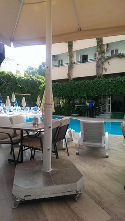 Orkide Hotel : pool area