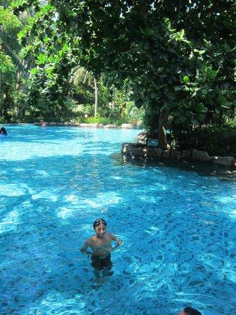 Furama Resort Danang: garden pool