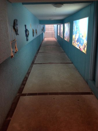 Hotel Cozumel and Resort: The Tunnel