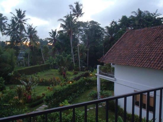 The White Villas Ubud: Sunrise