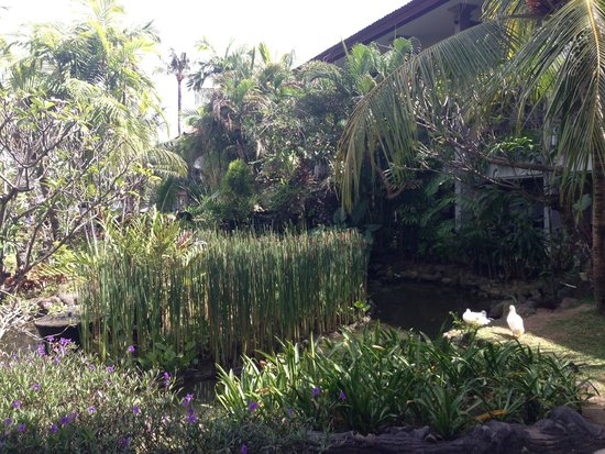 Bali Dynasty Resort: Lovely gardens