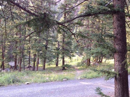 Pioneer Guest Cabins : View