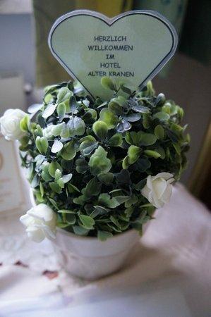 Hotel Alter Kranen: flower in room