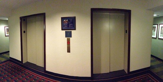 Club Quarters Hotel, Wacker at Michigan: 2 Elevators for 38 Floors. Ridiculous.