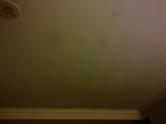 One King West Hotel & Residence: STAINS ON CEILING