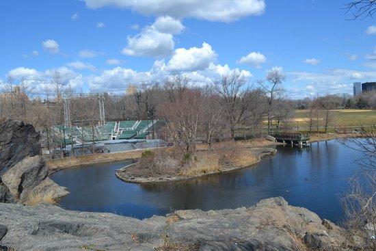 Central Park: Прозрачный весенний воздух