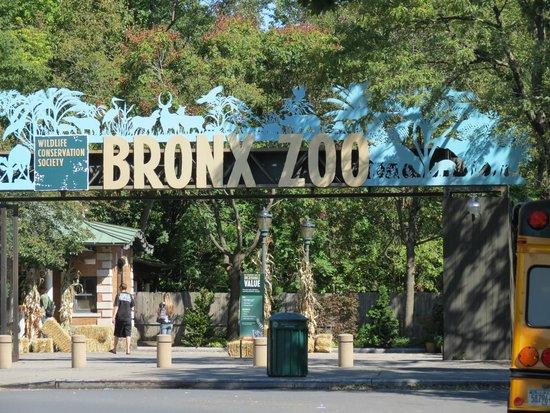Bronx Zoo : Vista da Entrada