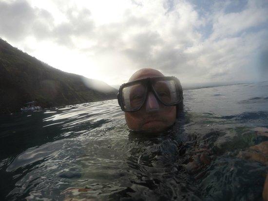 Adventures in Paradise Kayak & Snorkel: Snorkeling Selfie