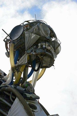 Eden Project: Weee Man's head.