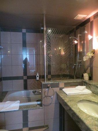 Asam Stadthotel: Bathroom