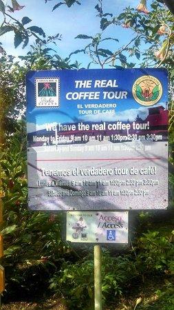 Doka Estate Coffee Tour: The real coffee tour