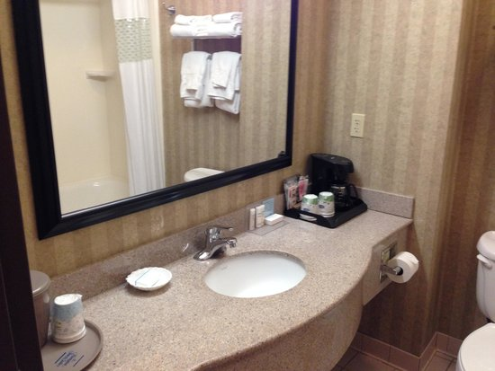 Hampton Inn & Suites Petoskey: バスルーム