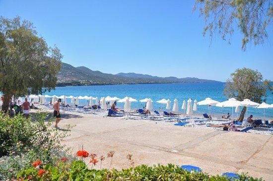 Filoxenia : beach