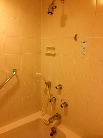 Hilton Nagoya : Shower n tub