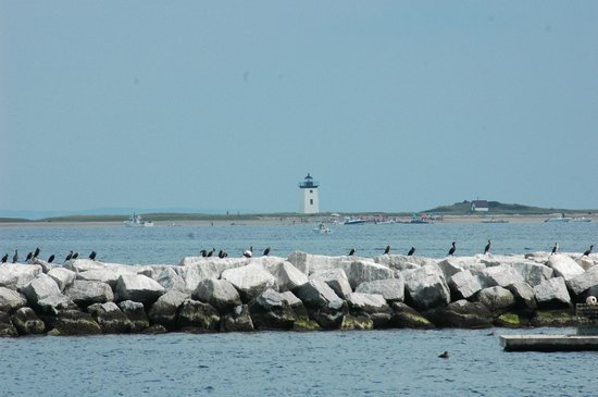 Long Point Lighthouse - Picture of Cape Cod Scenic Tours